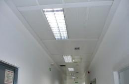 Limpieza de oficinas y hospitales